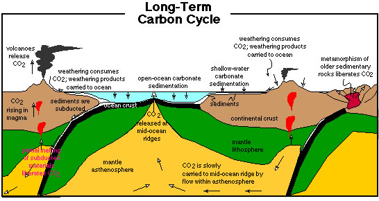 longtermcarboncycle